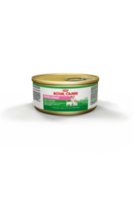 ROYAL FEL LATA STARTER MOUSSE (7111050)